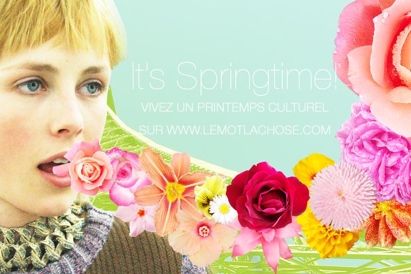 Le-mot-la-chose_Stephane-Chemin-Directeur-Artistique-Illustrateur-Graphiste-freelance_17_springtime